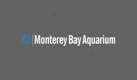 Get an inside glimpse of sharks, jelly fish and other marine life with live broadcasting from the Monterey Bay Aquarium.